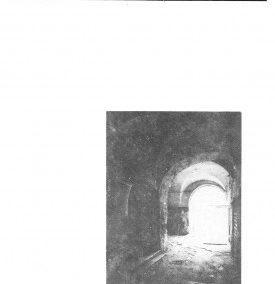 1991 Nr.2