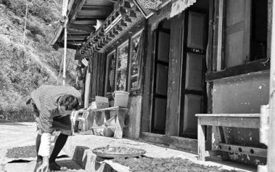 Šarūnė Sederevičiūtė. Fotografavimo globalizacija ir netikėtos jungtys (NŽ-A nr. 3)