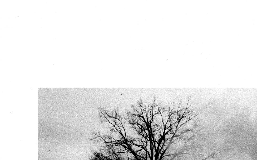 2006 Nr. 9/10