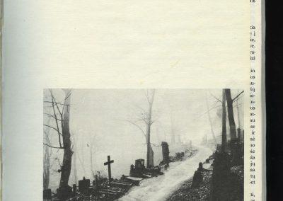 1994 Nr. 11