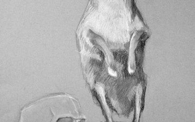 Liudas Jovaiša. Prašmatnus kontušas ir nunešiotas žiponas: arba istorija Kristinos Sabaliauskaitės romanuose (NŽ-A nr. 5)